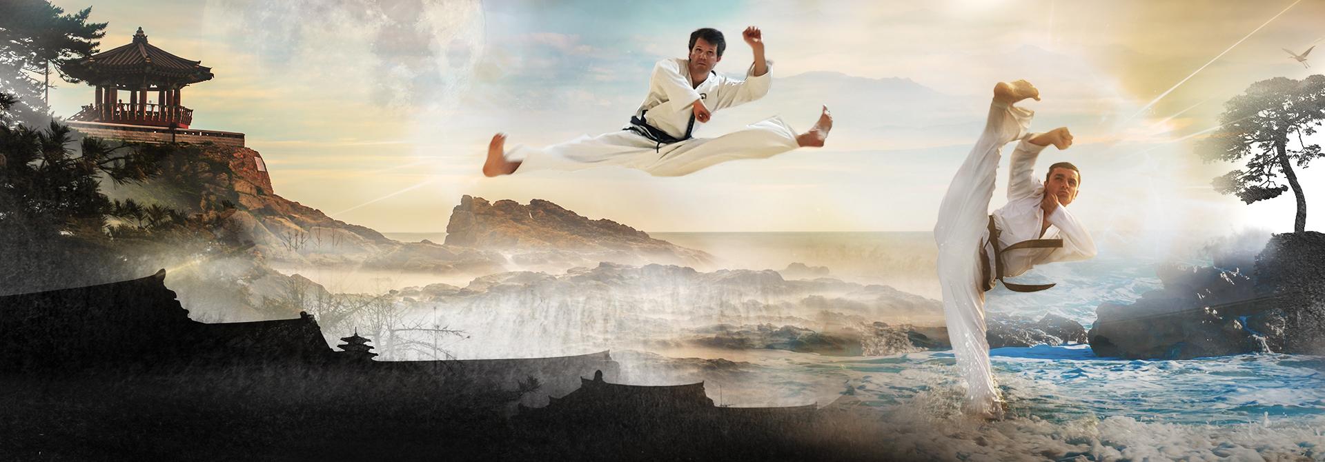 WinTaekwondo Leitung